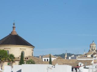 MEZQUITA, confortable y completo apartamento, Córdoba