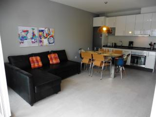 Recently remodeled / 2 bedrooms -1 bath + WiFi