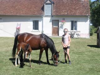 Le cottage des chevaux, Valencay