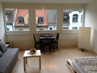 Lovely Studio in Urban Lucerne