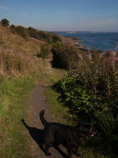 On the Fife Coastal Path heading towards Kirkcaldy, #FCCT