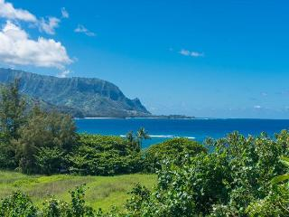 Luxury beachfront, Hanalei Bay view, air-conditioned, sleeps 6, beach!, Princeville
