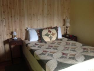 White mountains one room cabin  with bath &kitchen, Thornton
