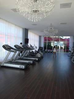 Exercise room in Icon