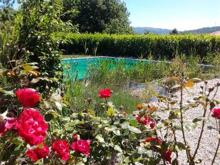 Rural house with garden and natural pool., Povoa de Lanhoso