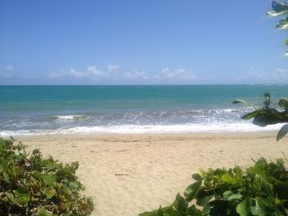 Beachfront apartment for rent in Cabarete