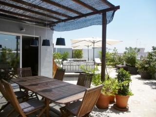 Penthouse Vincent, Valencia