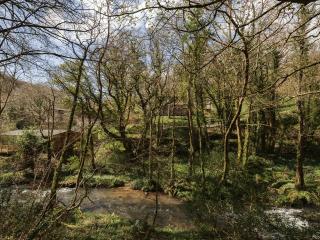 Hillside at Gara Mill located in Slapton, Devon