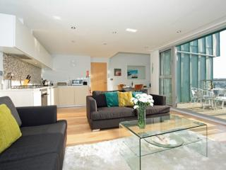 Fistral View, 51 Zinc located in Newquay, Cornwall
