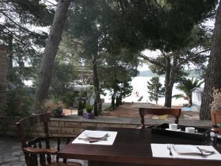 Villa Petra Dalmatia