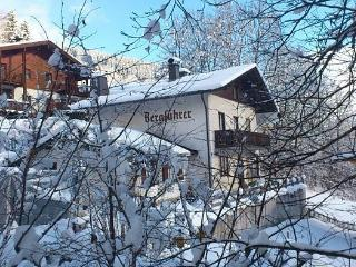 Chalet TrassXpress, Zell am See