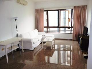 Novena 3BR Serviced Apartment, Singapore