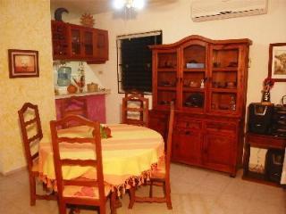 Rustic Hacienda Lodge  ,  Condo El Cuyo