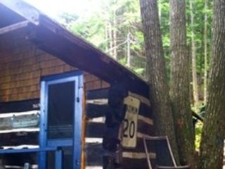 Welcome to Bill's  Rustic LIttle Hawk Lake Cottage, Haliburton