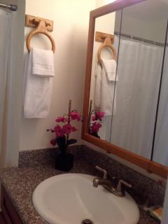 Bathroom adjoins master bedroom.  Towels and bed linens included.