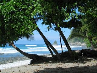 Cabo Matapalo Beach Camping - (TENT included)