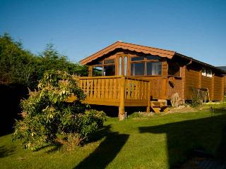 Cadair View Lodge Log Cabin, Bronaber