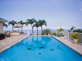 Sunset Paradise 180 ocean view Pool/Spa for 16 ppl, Kailua-Kona
