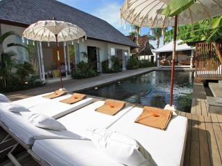 Large Luxury Villa 10min to Seminyak