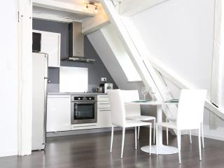 "MY SWEET HOMES - ""MODERN"" Apartment in the center, Colmar"