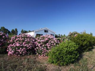 Nerelie Home-Villa tra mandorli e olivi grande giardino-wi-fi free!!!