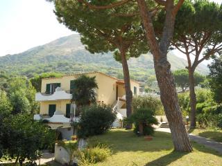 Villa Olivia, Forio