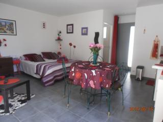 La vie en rose dans ce studio douillet de27 m2 avec wifi, piscine, parking fermé, Villeneuve-les-Avignon