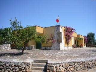 Cottage in Olive Grove, 6 km to the Beach, Gallipoli
