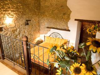 Girasole – Ventena Vecchia Antico Frantoio, Moncioni