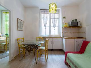 France long term rentals in Rhone-Alpes, Lyon