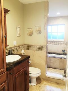 Guest bath with walk in shower and soaking tub behind