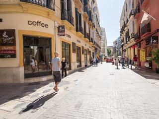 Atico 80m terraza de encanto 2d Malaga Centro WIFI
