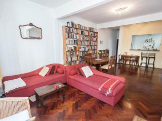 Lovely and sunny 1-bedroom apartment in Buenos Aires - Alto Palermo Area