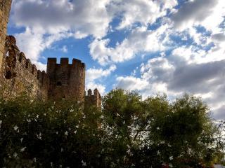 El castillo, desde el jazmín.