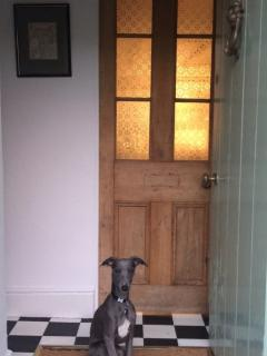 One well-behaved dog welcome is at the cottage - here's ours, Ralph, on his first trip to Llys Cadwe