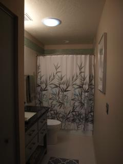 Hall bath with shower/tub combo