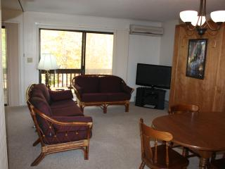 Beech Mountain Condo Sleeps 5; Walk to Ski Beech