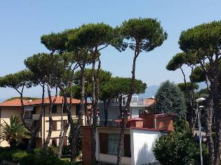 Viareggio citta Giardino sea 200mt mare