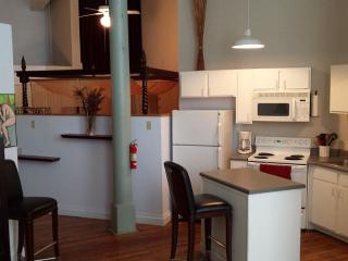 Fabulous Condo In Warehouse District Cotton Mill, Nueva Orleans