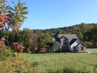 Private Mountain Escape! 4 Bedrooms +GAMEROOM, Robesonia