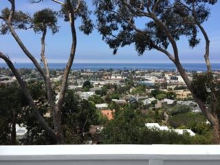 Jane's Stunning Oceanview Craftsman in the village Of La Jolla - Walk To All!