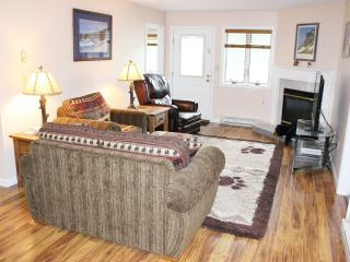 Nordic Inn - WiFi, Pools, Saunas, Hot Tubs, Fit Ctr, Game Rm, No Hidden Fees, Lincoln