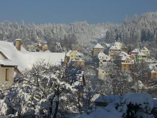Winter view of the early 20th Cent. villas from the house and the Jizera mountains