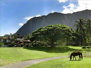 Open Palm Plantation A Slice of Heaven in Paradise, Waimanalo