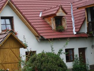 Porumbacu 295 Transylvanian GuestHouse Near Sibiu (Free bikes)