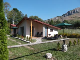 Cottage - 2 person - Studio 2 - in Valisoara, Aiud
