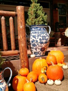 Bright, plump pumkins add a splash of color for the Fall season.