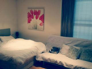 Studio Flat , Queensway, London