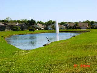 Dr.Frank & Margaret's Florida Lake View Villa, Kissimmee