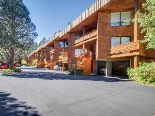 Chic, ski-in/ski-out, dog-friendly condo w/great mountain views, perfect locale